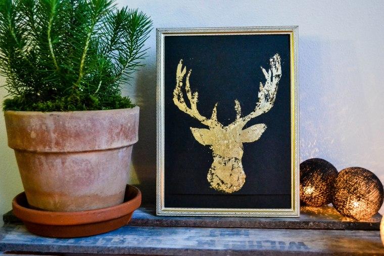 reindeer (18 of 22)