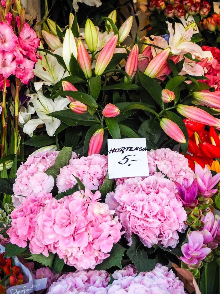 flowermarketTallinn16 (10 of 17)