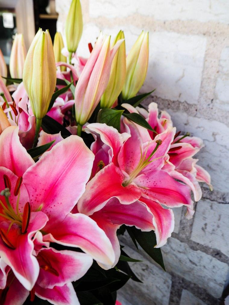 flowermarketTallinn16 (12 of 17)