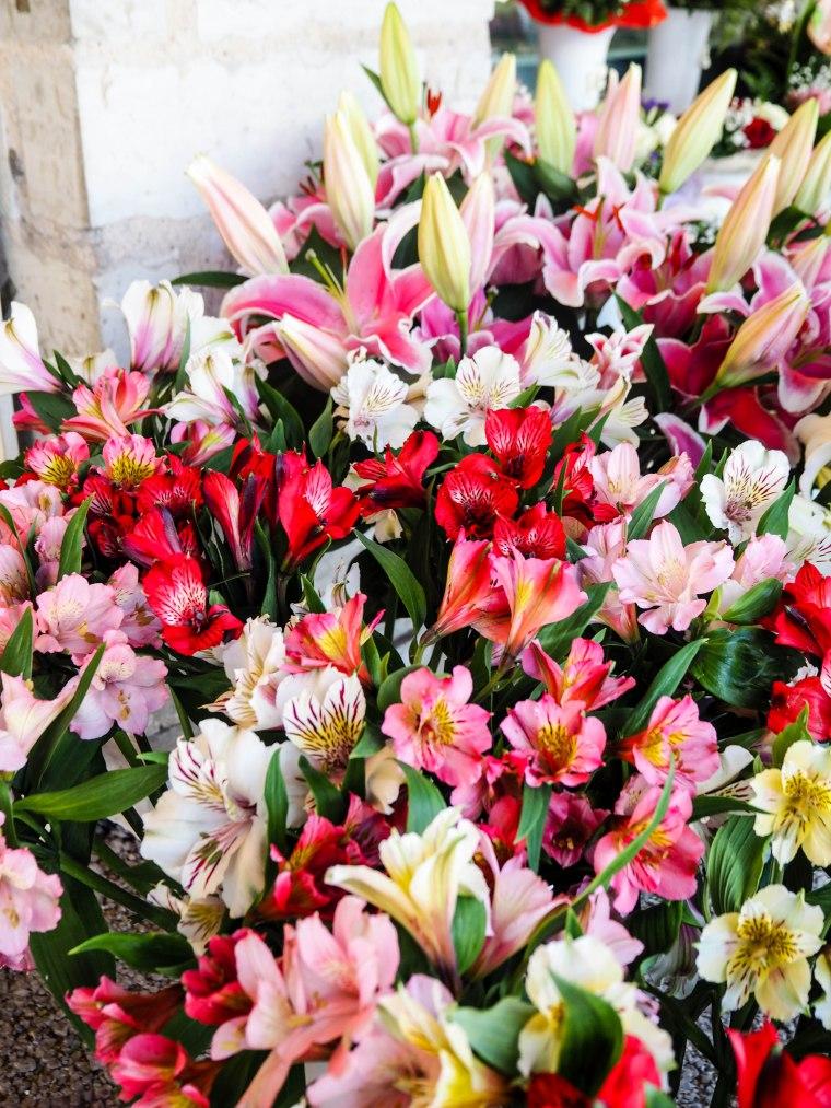 flowermarketTallinn16 (14 of 17)