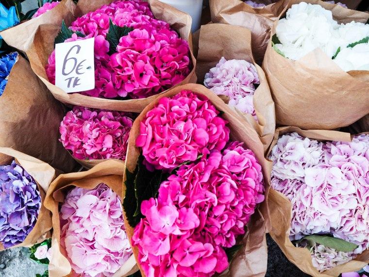 flowermarketTallinn16 (3 of 17)
