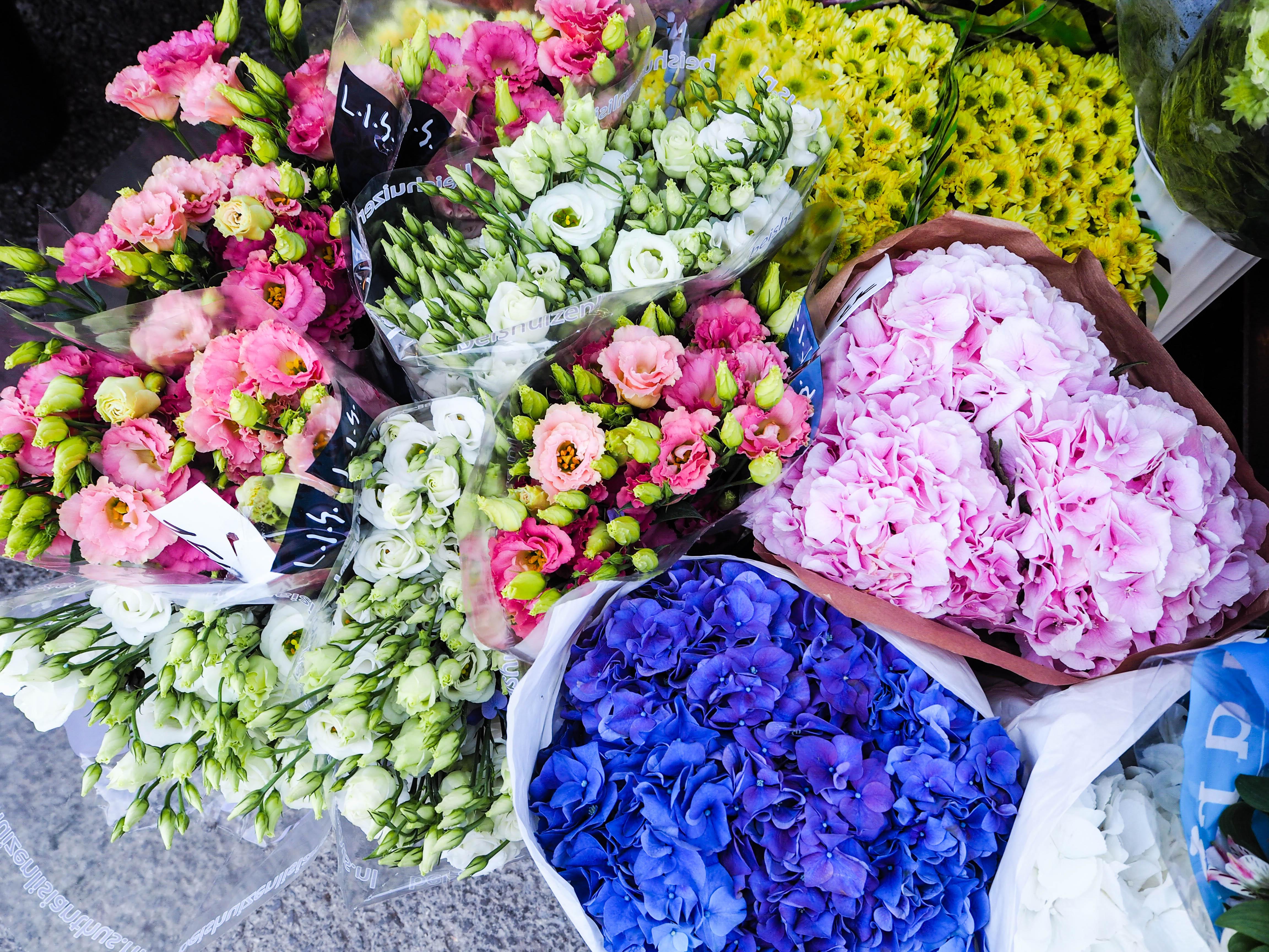 flowermarketTallinn16 (6 of 17)