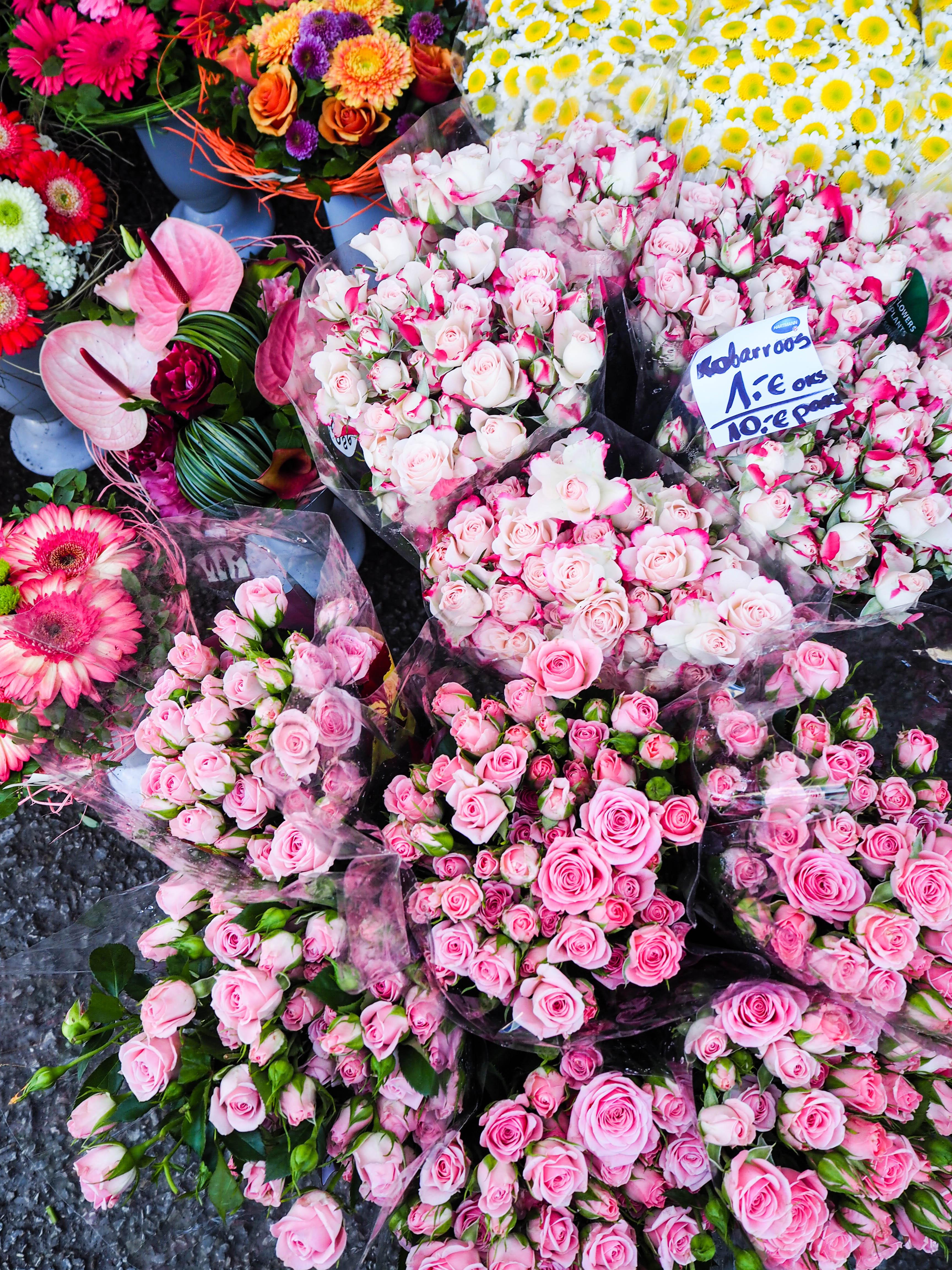flowermarketTallinn16 (8 of 17)