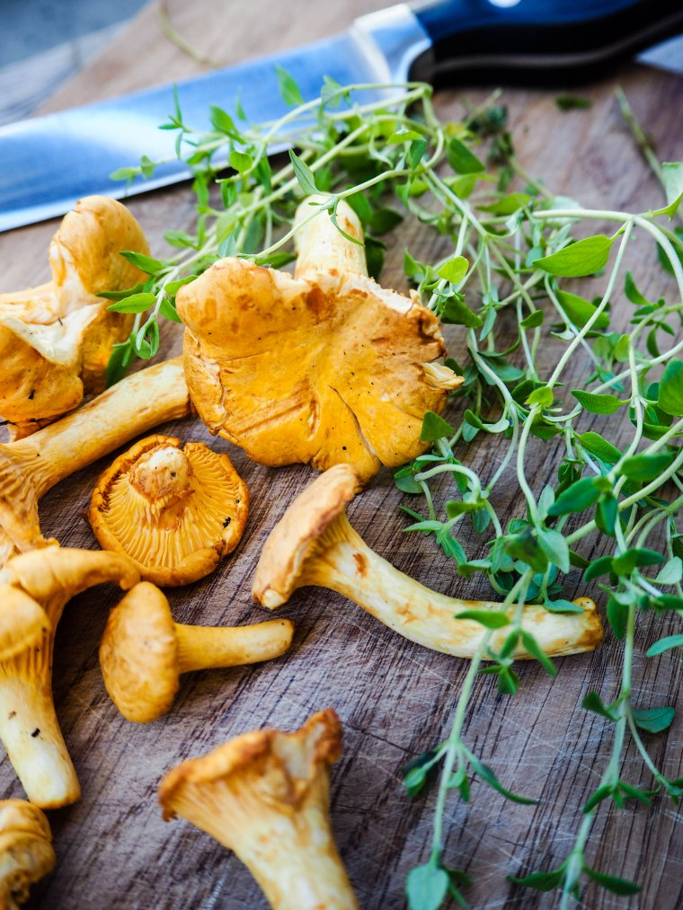 chanterelle_galette (6 of 17)