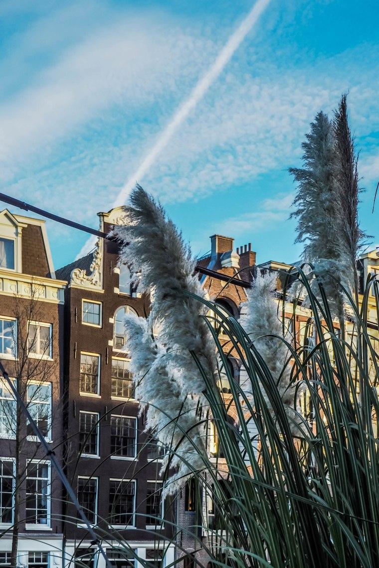 amsterdam2016-262102
