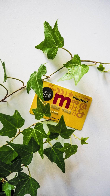 museokortti-3065001
