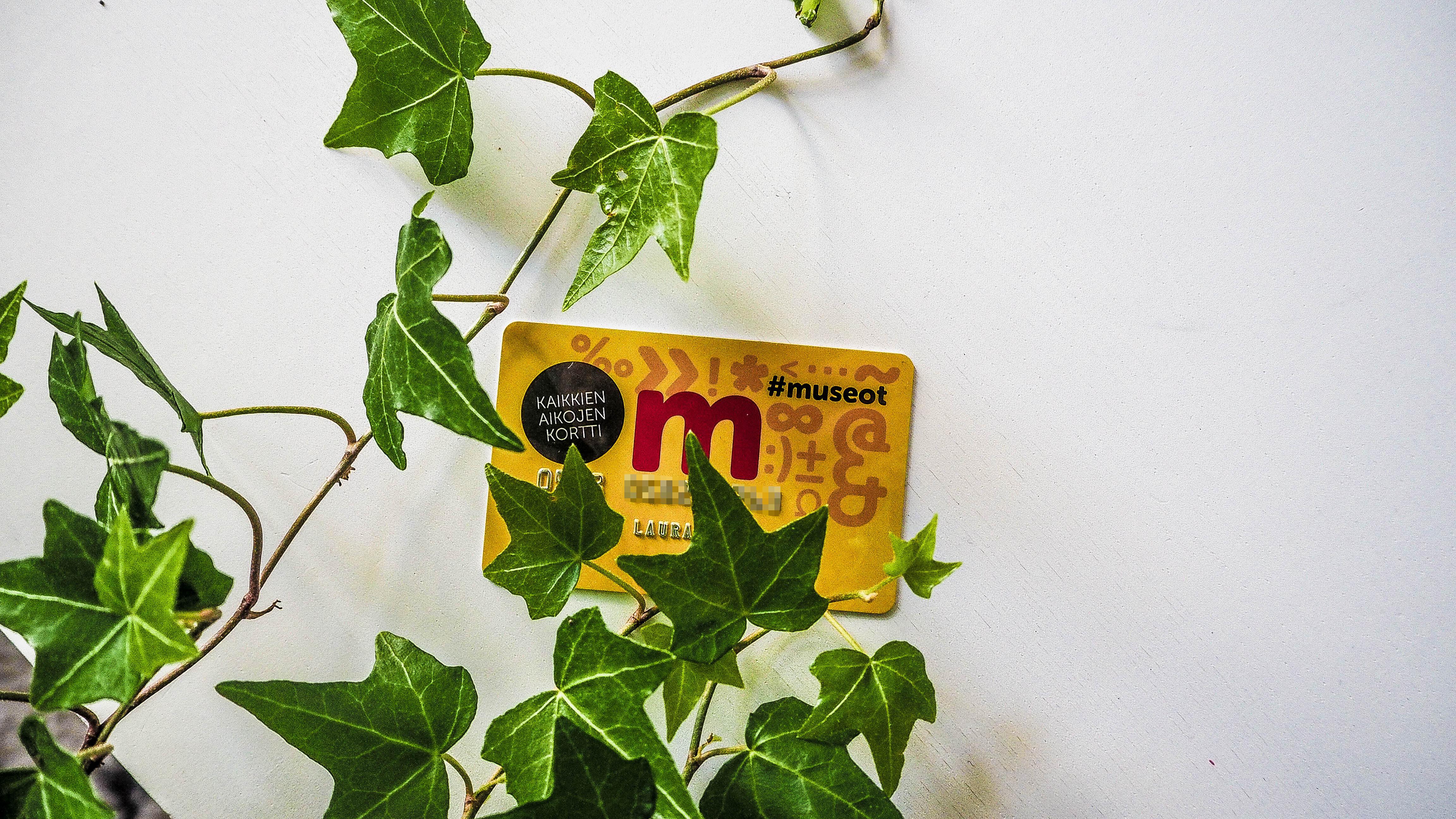 museokortti-3065007